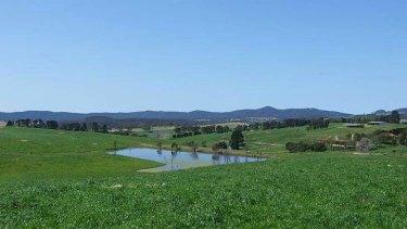 A dairy farm on the Candelo-Wolumla Road, Wolumla, NSW.