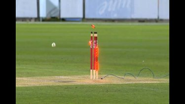 Live T20 cricket: Renegades v Stars