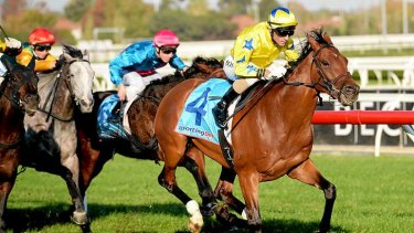 Some chance: Midsummer Sun wins for Glen Boss. Damien Oliver takes the ride on Saturday.