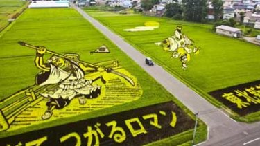 An aerial view of an artfully planted rice paddy in Inakadate, Japan.