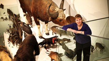 Melbourne Museum's Kate Phillips (above) has no problems with being described as a ''curator''.