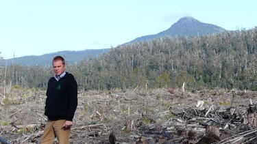 The Wilderness Society's Vica Bayley says the group is suspending its involvement in peace talks as native forest logging continues in Tasmania. .