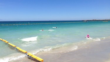 Swimmers take to the water in the safety of Coogee Beach's new shark barrier.