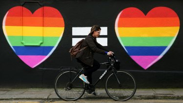 A voter in Ireland's gay marriage referendum.