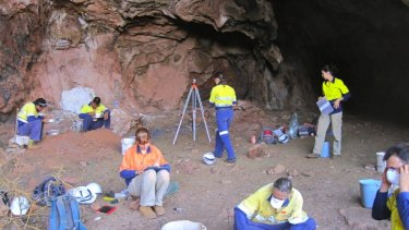 Significant finding: Digging in the Ganga Maya Cave in the Pilbara.