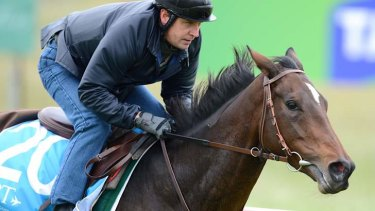 Verema with jockey Jonathan Fleutot on Thursday, October 31.