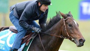 Verema with jockey Jonathan Fleutot on Thursday, October 31.