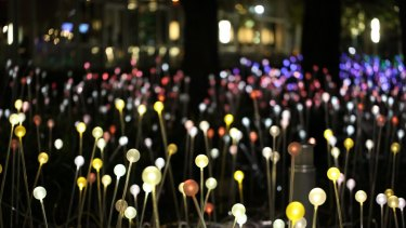 Thousands of lights will be planted on Albany's Mt Clarence.