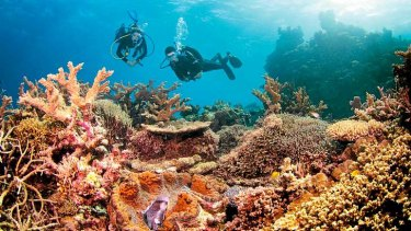 Controversy rages over the Great Barrier Reef.