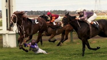 Dragged over the line: Jockey Ray Selkrig and Hot Chestnut.