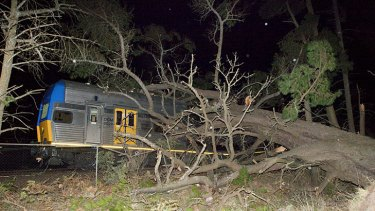 Passengers injured ... a tree causes huge damage to a train at Medlow Bath, in the Blue Mountains, last night. Three people needed to be treated at the scene.
