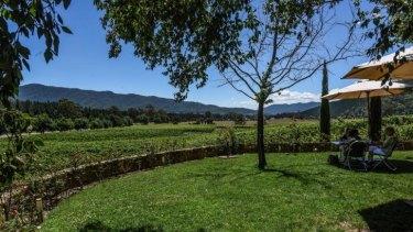 Boynton's Feathertop Winery, at 6619 Great Alpine Road.