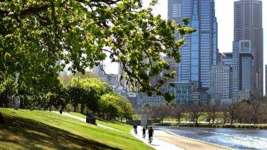 Keeping the trees green: Alexandra Avenue beside the Yarra.