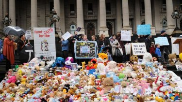 Hundreds of teddy bears on display as families protest against day care funding cuts.