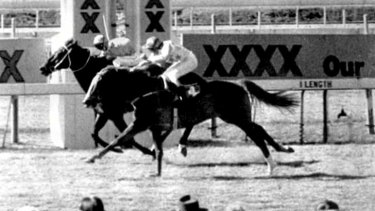 Fine Cotton ring-in, Bold Personality, winning a race at Eagle Farm in 1984