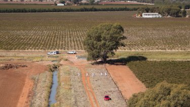 Stephanie Scott's red Mazda 3 was found by police in a field outside the Leeton township.