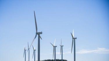 Bill Shorten has accused Tony Abbott of being hostile to wind energy.