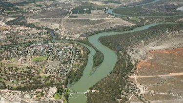 Joint venture ... a view of the point where the Darling River (narrow, left) meets the murray river at Wentworth. The Murray-Darling Basin generates as much as 40 per cent of Australia's agricultural income.