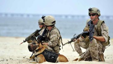 Canine warrior ... a Navy SEAL platoon performs a land warfare demonstration