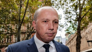 Immigration Minister Peter Dutton has criticised companies agitating for the government to take action on marriage equality.