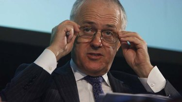 NBN critic: Malcolm Turnbull.