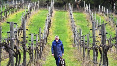 Roger Blake on his winery in Deans Marsh.