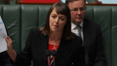 New vows being questioned ... Attorney-General Nicola Roxon.