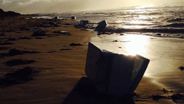 Beached: the Fisher and Paykel fridges.