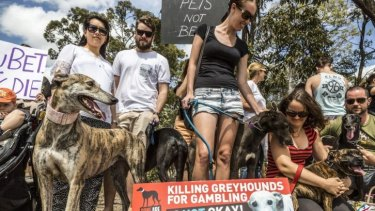 Protesters say a new greythound racing track will perpetuate animal cruelty and add to Logan's gambling problems.
