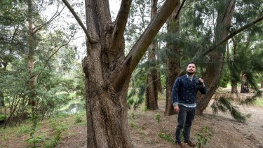Ecologist Dale Nimmo says trees help a landscape support native animals in tough times.