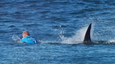 The real deal: Mick Fanning battles with the shark at Jeffreys Bay, South Africa, in July.