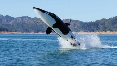 "The Seabreacher allows its users to ""breach"", just like the killer whale it resembles."