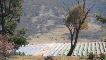 The smaller 20 MW-Royalla Solar Farm in the ACT nears completion.
