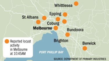 Locust reports in Greater Melbourne.