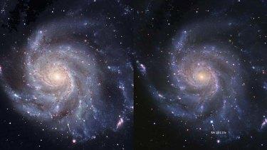 Rare glimpse ... a supernova 21 million light years away.