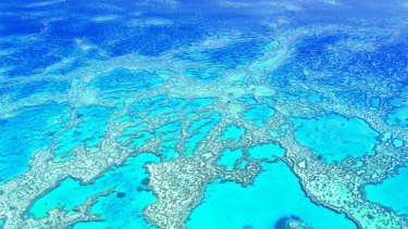 Danger to Great Barrier Reef growing as reports reveal ...