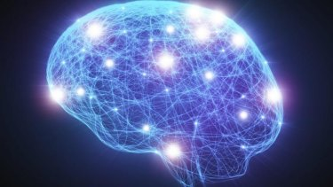 Expansive: Brain based learning.