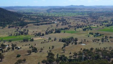 Lucrative land:  Doyles Creek in the Hunter Valley.