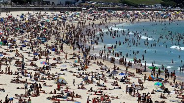 100 million-plus beach visits each year in Australia - and fewer than one death from shark bites.