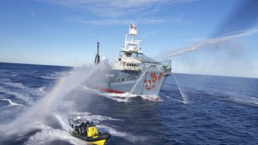 The Japanese harpoon ship Yushin Maru No.3, its bow splashed with red paint by Sea Shepherd activists, fends them off with water cannon.