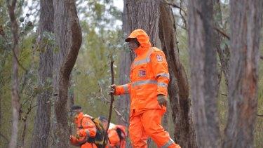 SES volunteers search the dense bushland for Luke.