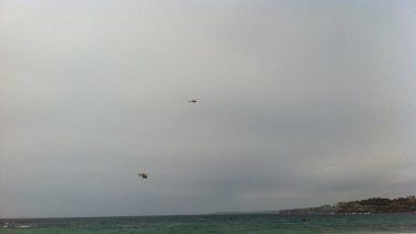 Helicopters circle Bondi Beach after a shark was spotted.