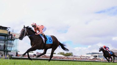 Too good ... Luke Nolen pilots Black Caviar to her 18th consecutive win.  The superstar mare may now contest Saturday's Lightning Stakes at Flemington.