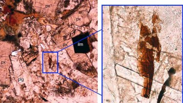 Bits of tranquillityite, a mineral previously known only from moon rocks and lunar meteorites, have been found in rocks from several sites in WA.