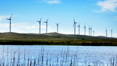 Withdrawn ... the state government will no longer support clean energy schemes and is urging the federal government to follow suit.