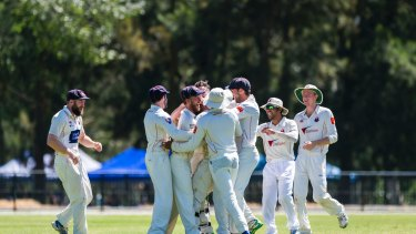 Cricket ACT Douglas Cup Semi-Final: Eastlake Vs North Canberra-Gungahlin 2018. Eastlake swarm onto wicket keeper Tom Henry after he gets Rob Ryan out. Photo: Dion Georgopoulos