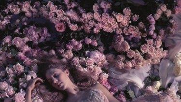 A rosy outlook: Lana Jones as The Sleeping Beauty, the ambitious centrepiece of the Australian Ballet's 2015 season.