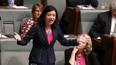 Labor MP Terri Butler.