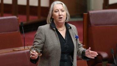 Liberal Senator Sue Boyce addresses the Senate.