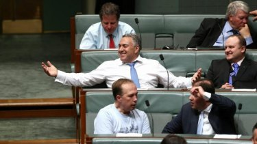 Triumphant: Treasurer Joe Hockey.